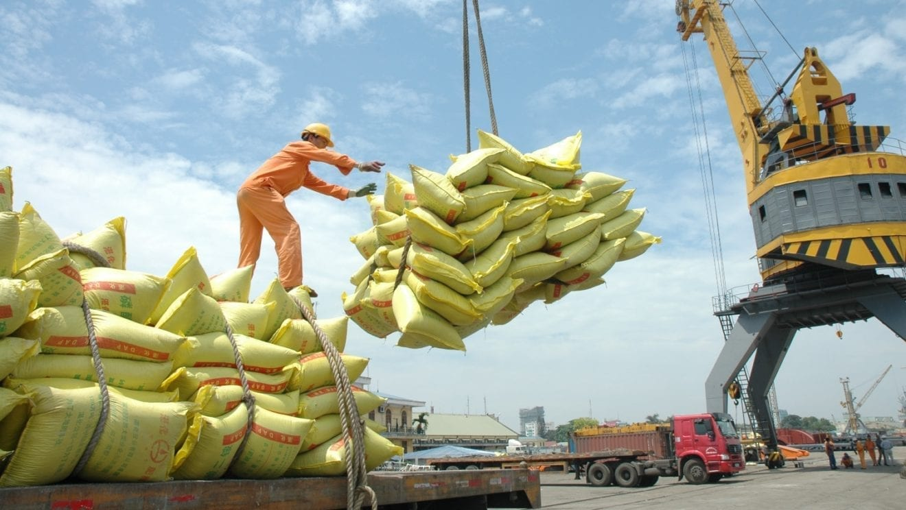 India Rice Export: India may corner nearly half of global rice trade as exports soar to record, Rice exports seen at 22 mln T vs 14.7 mln T yr ago